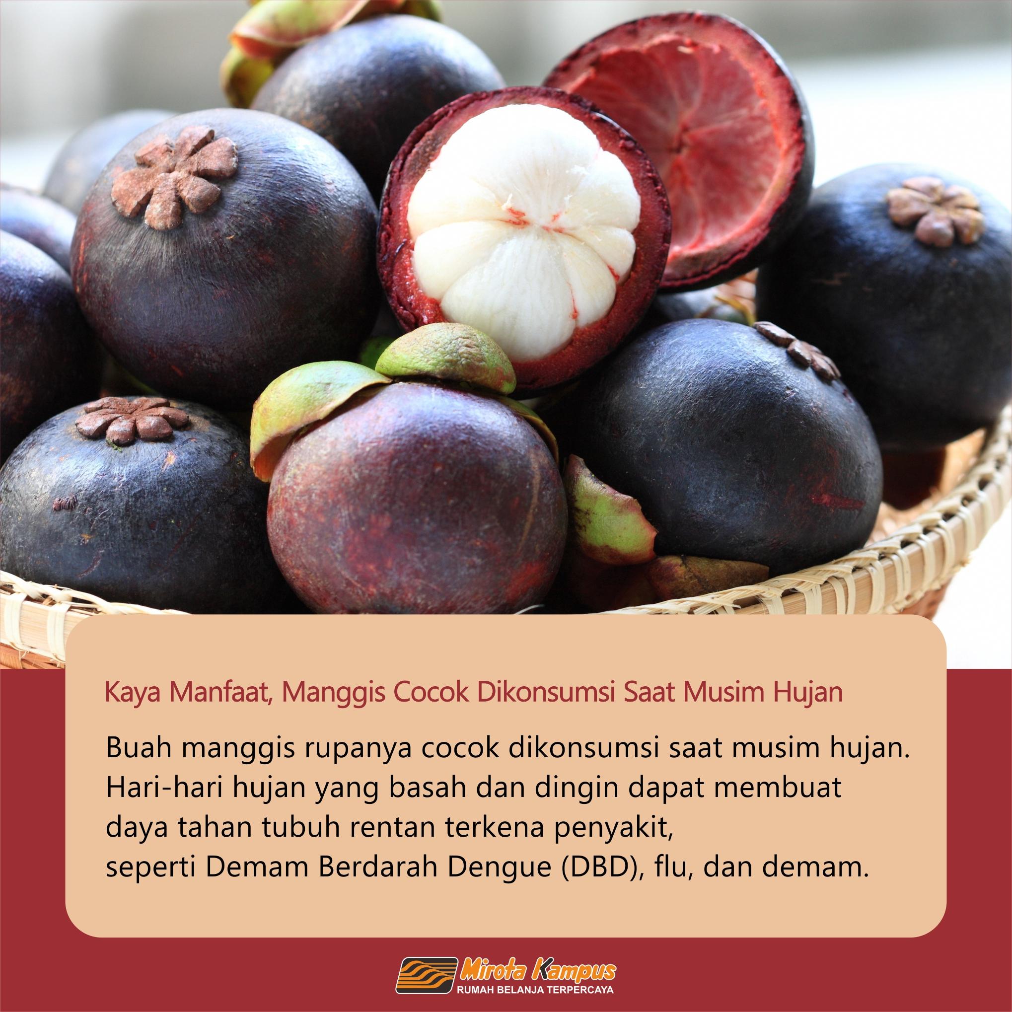 Kaya Manfaat, Manggis Cocok Dikonsumsi Saat Musim Hujan